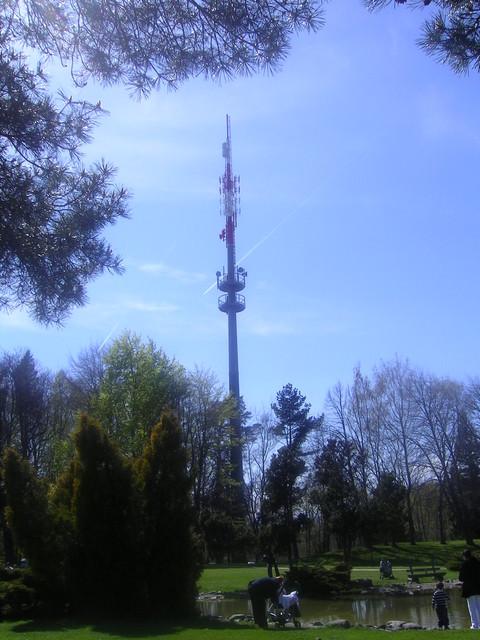 Signal Bougy